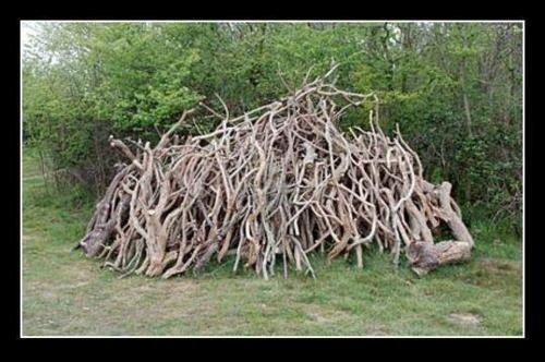 """Résultat de recherche d'images pour """"black metal tree"""""""