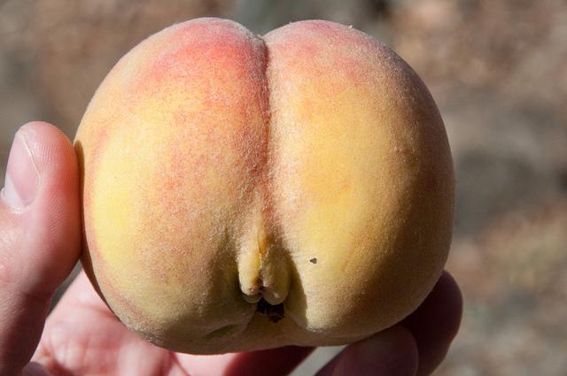 девочки смотреть вагина в виде персика его
