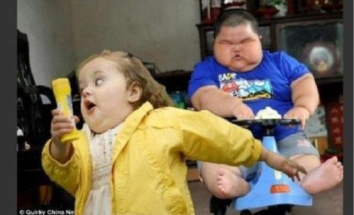 It Looks Like A Fat Asian Kid In Dog Form