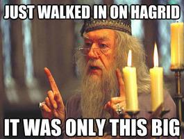 Harry Potter schwulen Sex